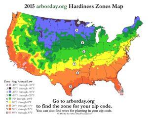 Growth Zones